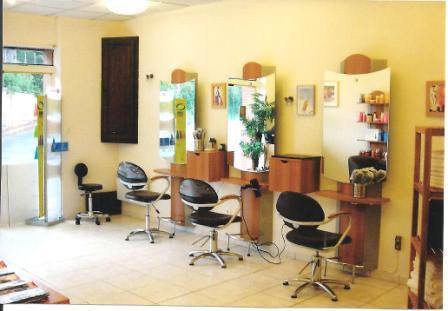 Salon de coiffure a vendre toulouse coiffures f minines for Salon coiffure toulouse